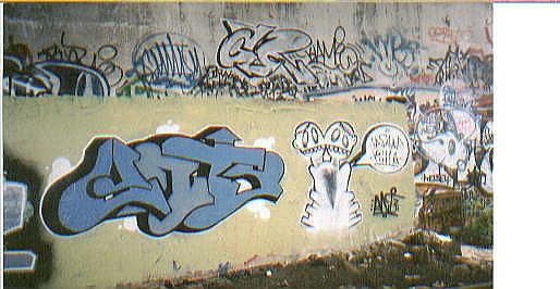 ant4.jpg