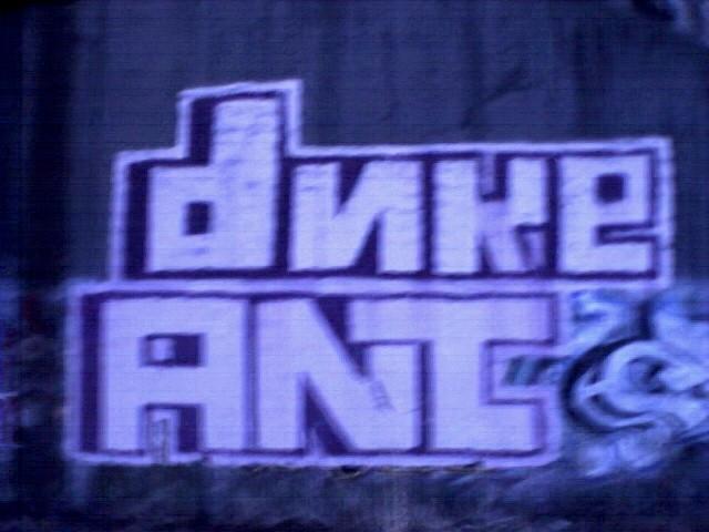 ant_duke2.jpg
