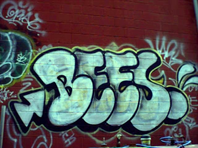 bee_hood.jpg